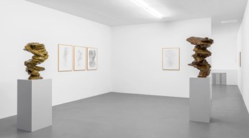 Contemporary art exhibition, Tony Cragg, Tony Cragg at Buchmann Galerie, Berlin