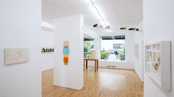 Contemporary art exhibition, Peter Wuthrich, Echo der Welt at Boutwell Schabrowsky Gallery, Munich