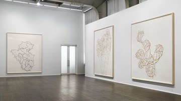 Contemporary art exhibition, Roni Horn, Wits' End Sampler | Recent Drawings at Hauser & Wirth, Zurich