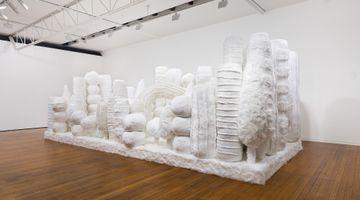 Contemporary art exhibition, Kathy Temin, Mothering Garden at Roslyn Oxley9 Gallery, Sydney