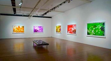 Contemporary art exhibition, Tracey Moffatt, Spirit Landscapes at Roslyn Oxley9 Gallery, Sydney
