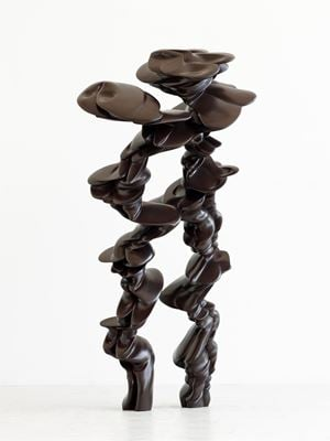 Pair by Tony Cragg contemporary artwork