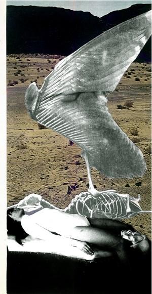 Leda Legend by Penny Slinger contemporary artwork