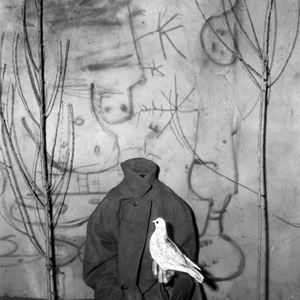 Headless by Roger Ballen contemporary artwork