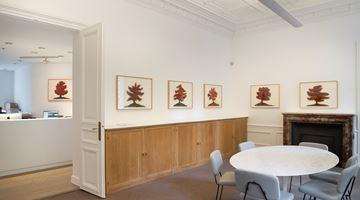 Contemporary art exhibition, David Nash, Trees at Galerie Lelong & Co. Paris, 13 Rue de Téhéran, Paris