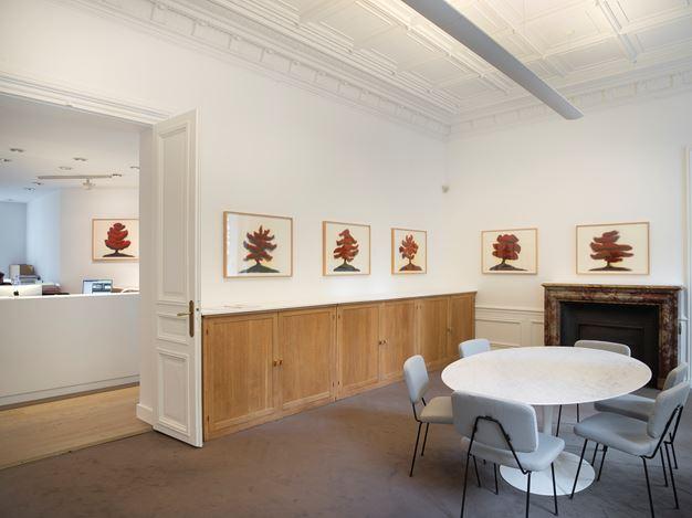 Exhibition view: David Nash,Trees,Galerie Lelong & Co., 13 Rue de Téhéran, Paris (5 September–5 October 2019). Courtesy Galerie Lelong & Co., Paris.