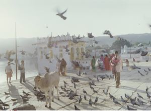 Holy Pushkar by Peter Bialobrzeski contemporary artwork