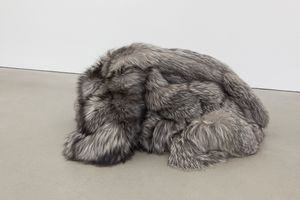 A Rebours by Pierre Huyghe contemporary artwork