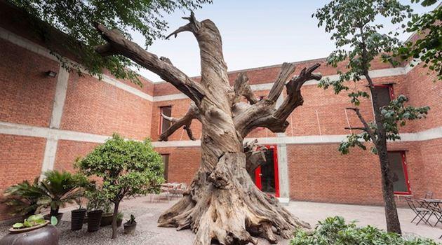 Chambers Fine Art contemporary art gallery in Beijing, China