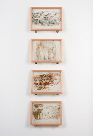 Longicorn Beetle engravings by John Wolseley contemporary artwork