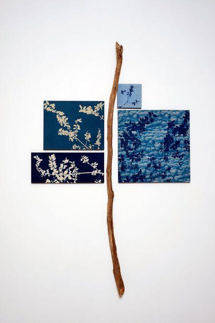 Leafing Blue by Susan Weil contemporary artwork