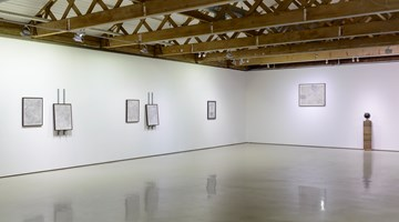 Contemporary art exhibition, Nolan Oswald Dennis, Options at Goodman Gallery, Cape Town