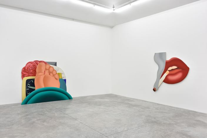 Tom Wesselmann, A Different Kind of Woman, 2016, Exhibition view, Almine Rech Gallery, Paris. © Tom Wesselmann. Photo: Rebecca Fanuele. Courtesy of the artist and Almine Rech Gallery.
