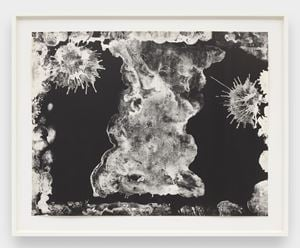 Plane Tree Reversal (TAM.1470A) by Ruth Asawa contemporary artwork works on paper, print