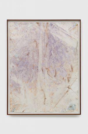 Untitled by Anya Gallaccio contemporary artwork