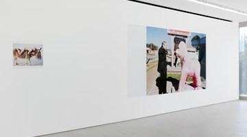 Contemporary art exhibition, Juergen Teller, Teller ga Kaeru at Blum & Poe, Tokyo