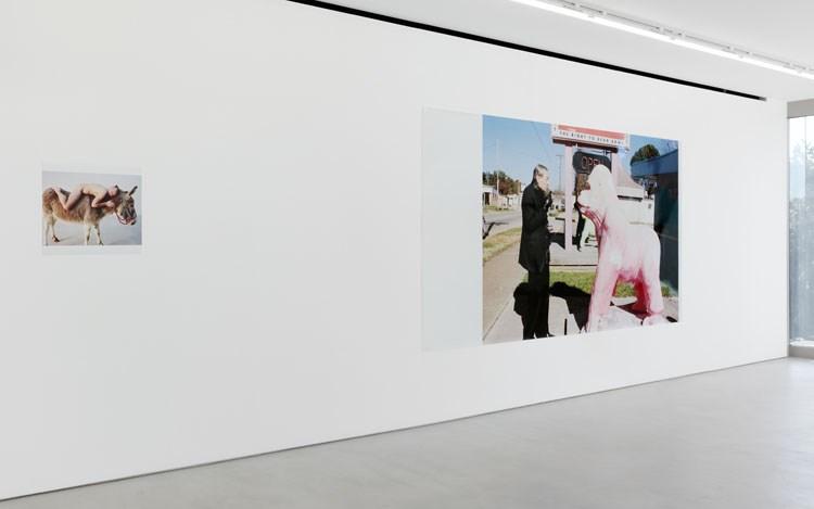 Juergen Teller: Teller ga Kaeru. Exhibition view, 2017. Blum & Poe, Tokyo. Photo: Shizune Shiigi. Courtesy of the artist and Blum & Poe, Los Angeles/New York/Tokyo.