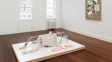 Contemporary art exhibition, Julian Hoeber, Research & Personal Development at Blum & Poe, New York