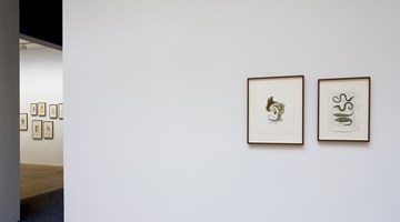 Contemporary art exhibition, Anri Sala, If and Only If at Galerie Chantal Crousel, Paris