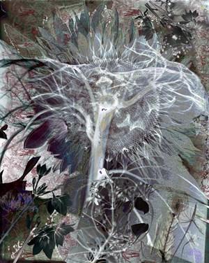 Unt. (years) by Aspassio Haronitaki contemporary artwork