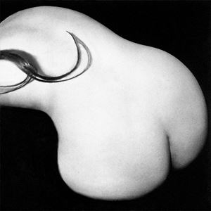 Combed (print only) by Pat Brassington contemporary artwork