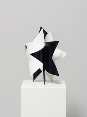 Dancing star (black and white) by Wonwoo Lee contemporary artwork