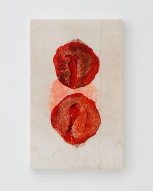 a pomegranate by Junko Oki contemporary artwork
