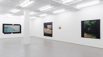 Contemporary art exhibition, Hamish Coleman, On Returning at Bartley & Company Art, Wellington