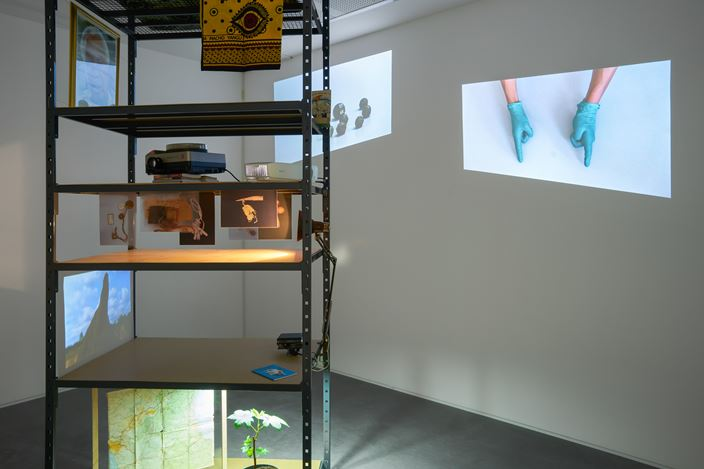 Exhibition view: Group Exhibition, I've grown roses in this garden of mine, Goodman Gallery, London (3 October–2 November 2019). Courtesy Goodman Gallery.