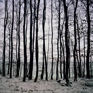 Fullmoon@Baltic Horizon by Darren Almond contemporary artwork