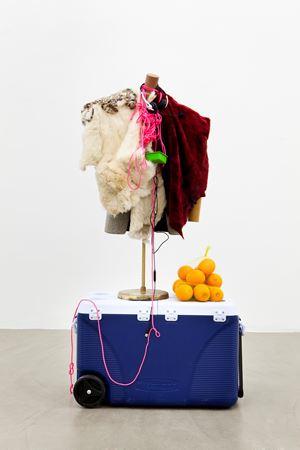 The Alpinist by Rachel Harrison contemporary artwork