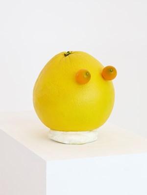 Cabeça de laranja (Orange head) by João Maria Gusmão + Pedro Paiva contemporary artwork