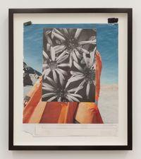 Formen Des Lebens by Hugh Scott-Douglas contemporary artwork mixed media