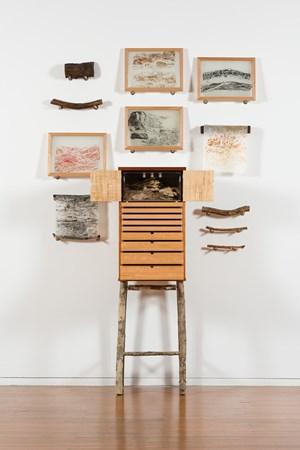 Beetlearium by John Wolseley contemporary artwork