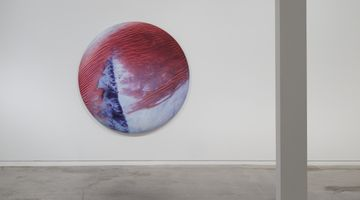 Contemporary art exhibition, Elizabeth Thomson, Lateral Theories at Two Rooms, Auckland