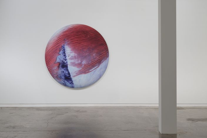 Exhibition view: Elizabeth Thomson, Lateral Theories, Two Rooms, Auckland (23 April–28 May 2021). Courtesy Two Rooms.
