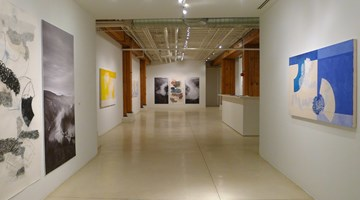 Contemporary art exhibition, Denise Green, Paintings, Drawings, Photographs at Sundaram Tagore Gallery, Chelsea, New York