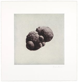 12 Objects, 12 Etchings (07) by Rachel Whiteread contemporary artwork