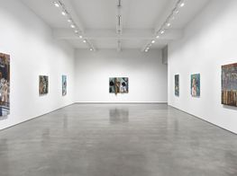 "Jim Shaw<br><em>Before and After Math</em><br><span class=""oc-gallery"">Metro Pictures</span>"
