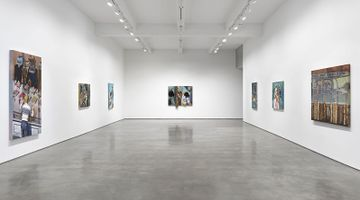 Contemporary art exhibition, Jim Shaw, Before and After Math at Metro Pictures, New York
