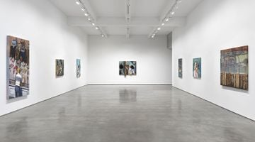 Contemporary art exhibition, Jim Shaw, Before and After Math at Metro Pictures, New York, USA