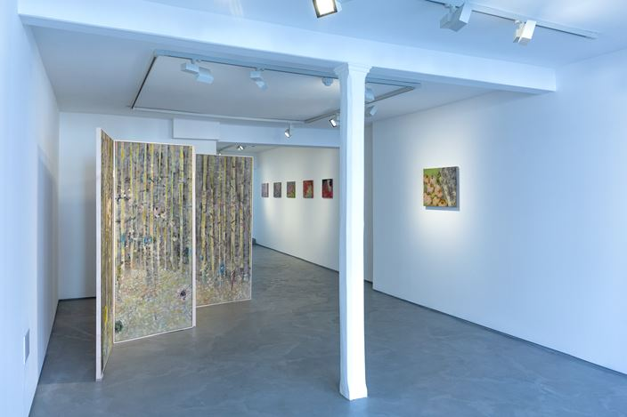 Exhibition view: Diane Chappalley, Behind Closed Doors, Informality (15 February–7 April 2020). Courtesy Informality.