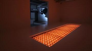 Contemporary art exhibition, Kohei Nawa, Biomatrix at SCAI The Bathhouse, Tokyo, Japan