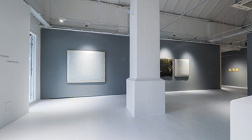 Contemporary art exhibition, Su Xiaobai, Luminescence at Pearl Lam Galleries, Dempsey Hill, Singapore
