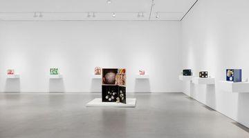 Contemporary art exhibition, Tetsumi Kudo, Metamorphosis at Hauser & Wirth, 22nd Street, New York, USA