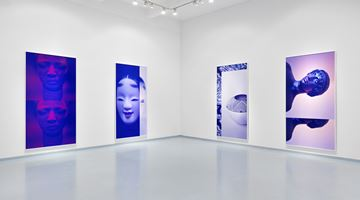 Contemporary art exhibition, Sara VanDerBeek, Women & Museums at Metro Pictures, New York