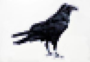 Common Raven by Marcus Coates contemporary artwork
