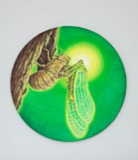 The Birth of cicada by Jang Jongwan contemporary artwork painting, works on paper