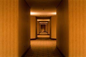 Hall by Neil Pardington contemporary artwork
