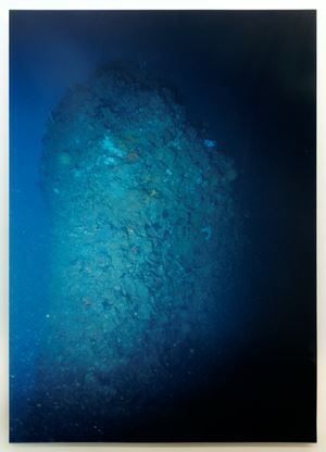Akitsushima Blue-Bow by Yukinori Yanagi contemporary artwork